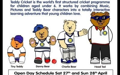 Teddy cricket for 2 to 5+