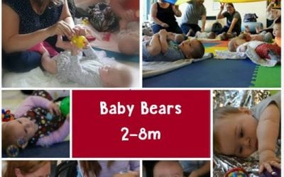 Little Bear Baby Signing (2-24m)