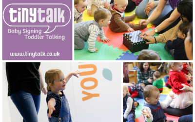 TinyTalk Baby Signing Rochester