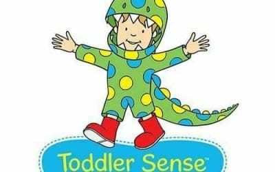 Toddler Sense – Stafford North End Community Centre