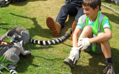 Whipsnade Zoo – Junior Zoo Academy (8-10 years old)