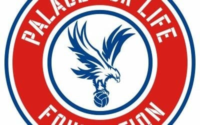 Palace for life soccer schools